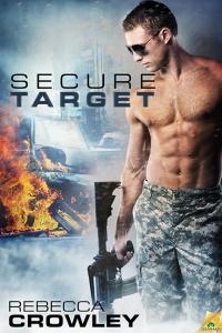 SecureTarget cover sm